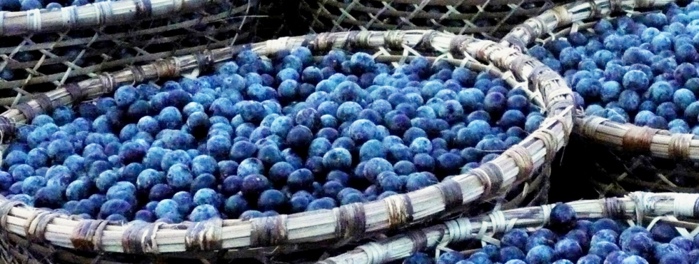 Acai berry in baskets